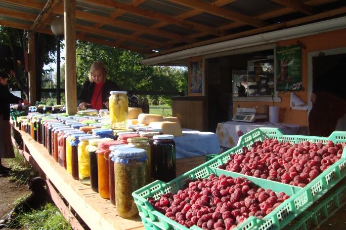 17 - 03 - 2011 40 - Puerto Octay - Osorno